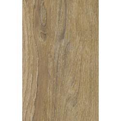 Balearic Oak (Dub)
