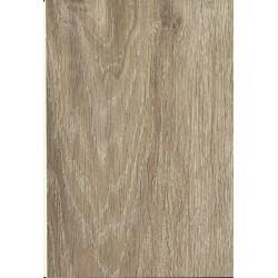 Spanish Oak (Dub)